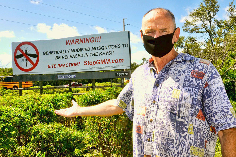 New Billboard Warning of Genetically Modified Mosquitoes